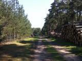 hintere Zufahrt